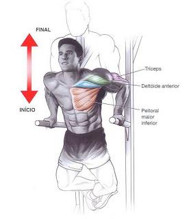 Flexão braços barras paralelas