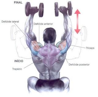 shoulder press ombros