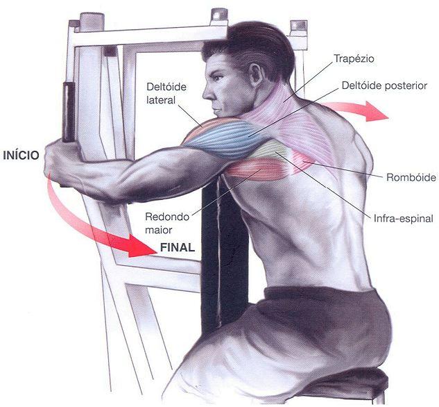 exercício poderoso para deltoide