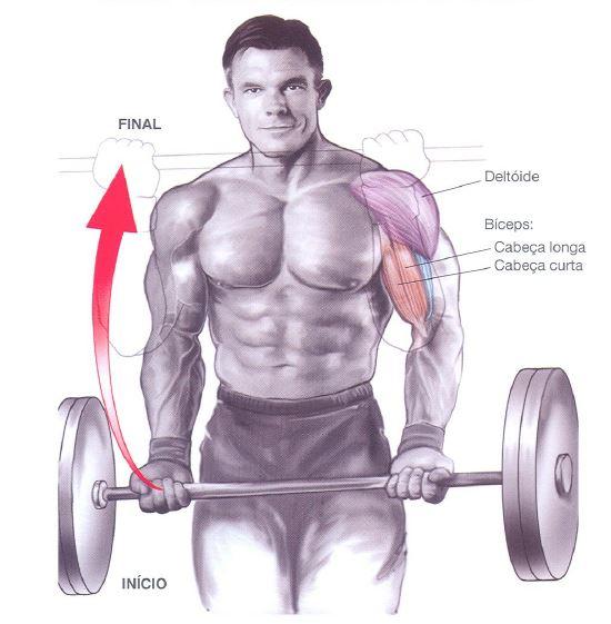 biceps-ganhar-massa
