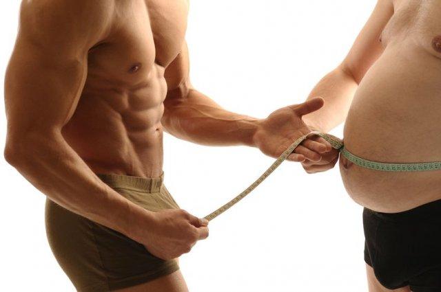 gordura na barriga