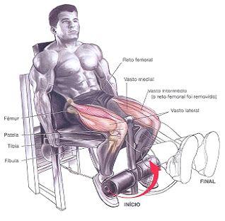 extensor-de-pernas