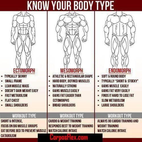 formas-corporais