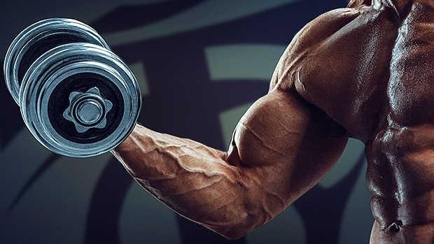 como-ter-biceps