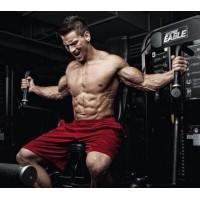 Aminoacidos BCAA ganhos musculares desportivos