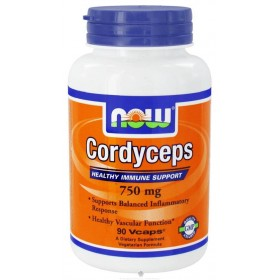 Cordyceps 90 caps Now Foods