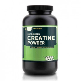 Creatine Powder 317g Optimum Nutrition