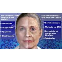 Radicais Livres Efeitos Antioxidantes Envelhecimento